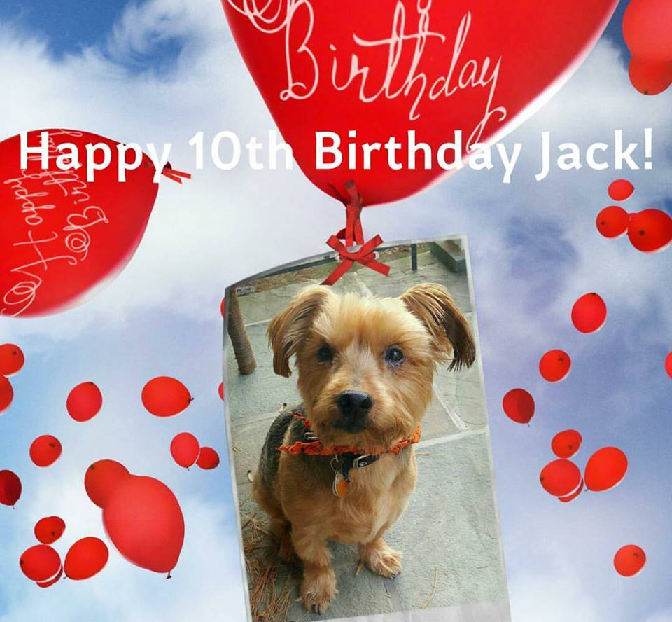jack-10th